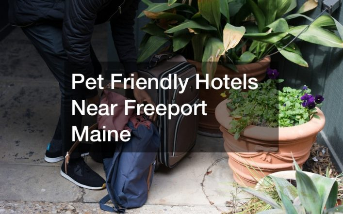 Pet Friendly Hotels Near Freeport Maine