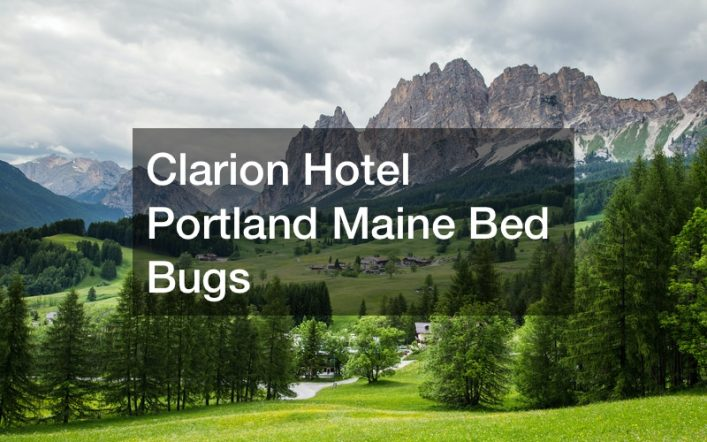 Clarion Hotel Portland Maine Bed Bugs